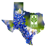 BRIT Texas Specimens logo